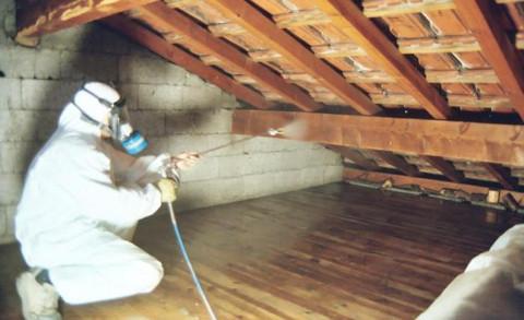Le traitement par injection a pour but de traiter le bois for Traitement des bois par injection